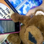 Fifo the Bear Unfollowing Daddy Bookins on Twitter 2012