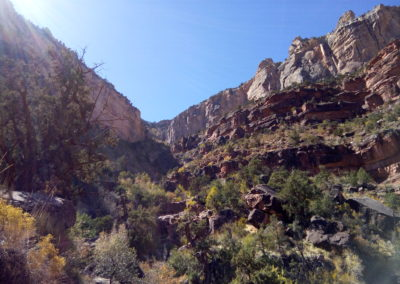 Looking up on the Bright Angel Trail