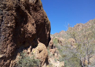 Wave Cave Trail
