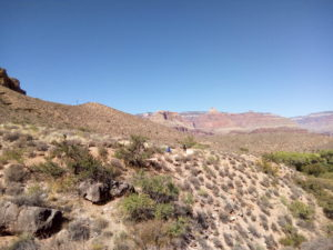 on the plateau point trail