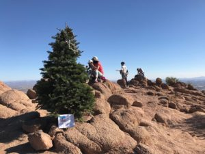The Christmas Tree on Camelback