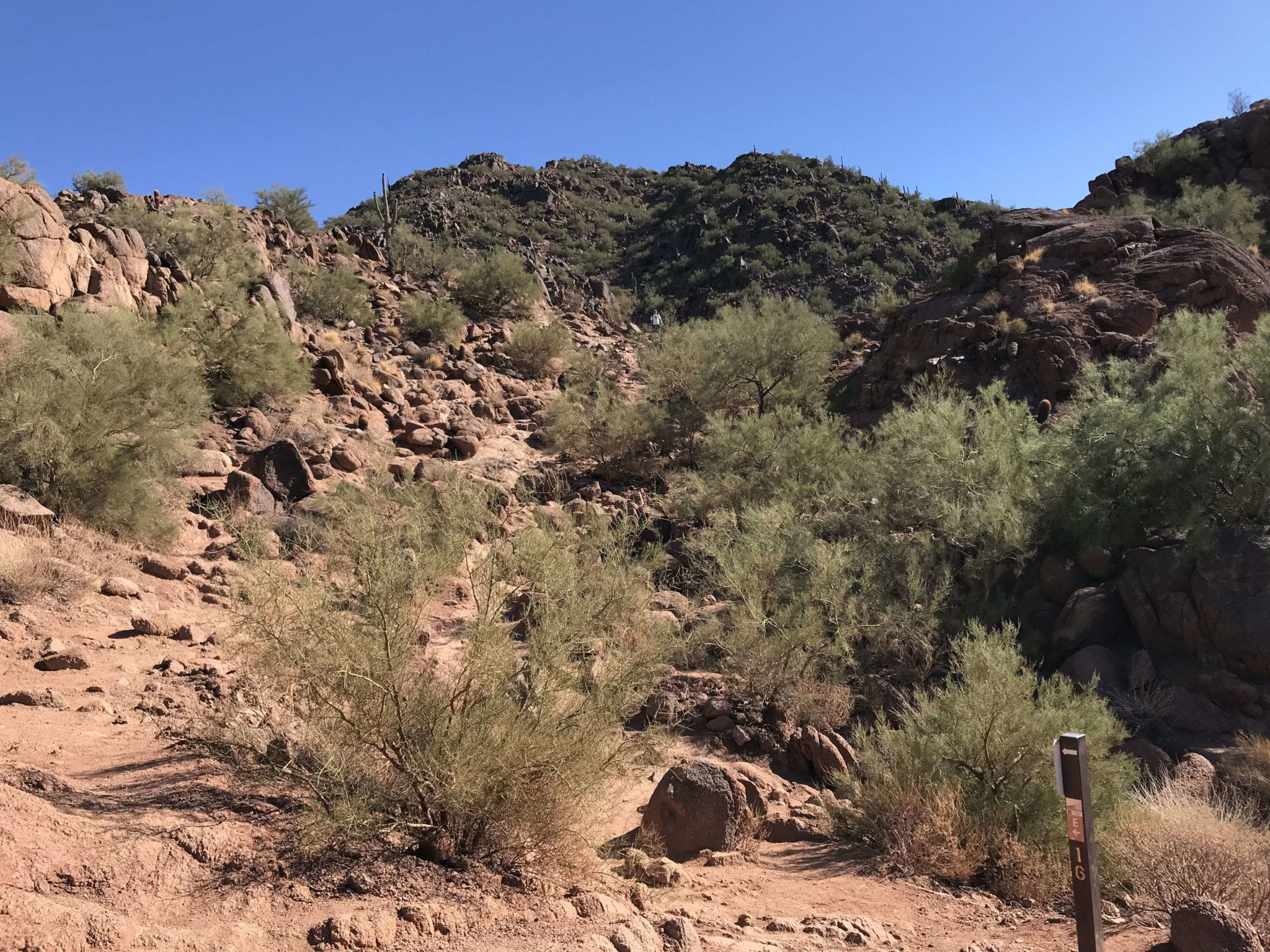Camelback via Echo Canyon Trail