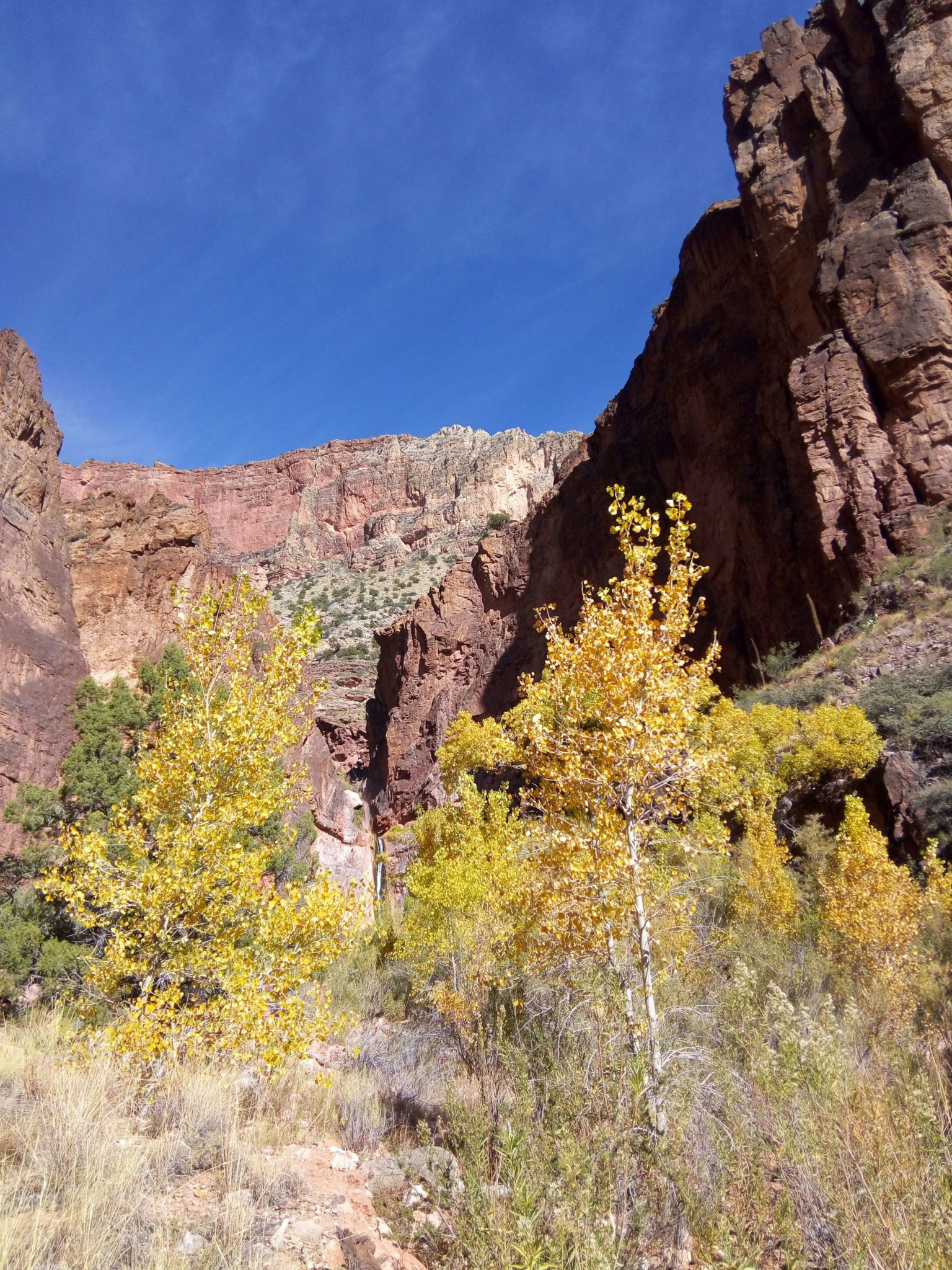 Fall in the Grand Canyon