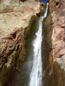 Upper Ribbon Falls in the Canyon
