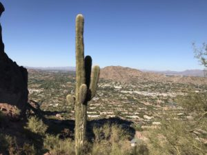 View of Paradise Valley