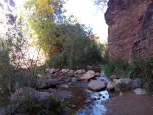 Wall Creek Grand Canyon