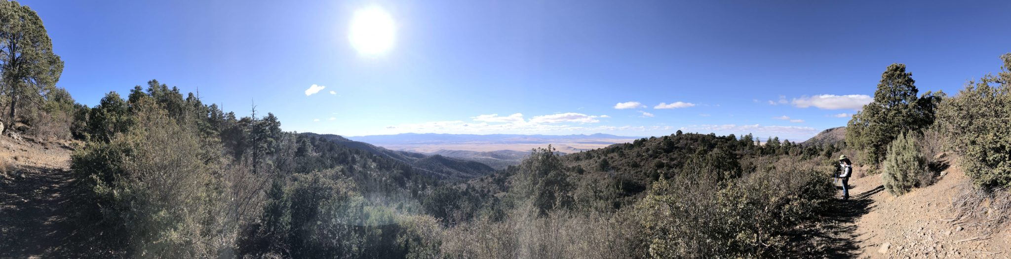 pano from the trail